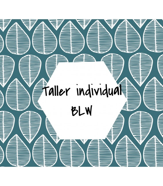 TALLER BLW INDIVIDUAL-online-