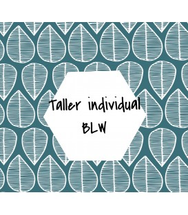TALLER BLW INDIVIDUAL-online-